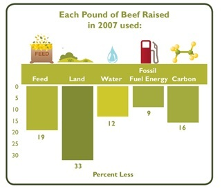 Each pound of beef raised in 2007 used less of the following: feed (19%), land (33%), water (12%), fossil fuel energy (9%) and carbon (16%).