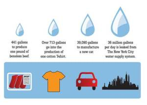 While one pound of boneless beef requires 441 gallons of water to produce, a cotton t-shirt requires 713 gallons, a new car requires 39,090 gallons and 36 gallons of water is leaked from the New York City water supply system every day!