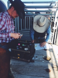 Ranchers write down antibiotic adminstration records